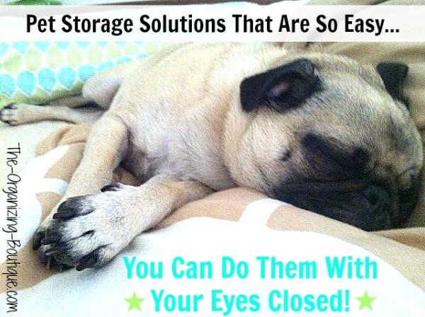 pet organizer solutions