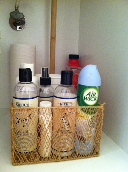 guest bathroom storage solutions- pet supplies