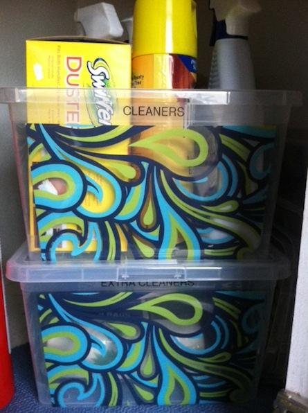 under sink storage - cleaners