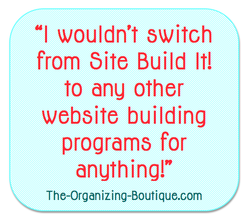 building business websites with Site Build It!